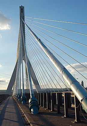 Bridge-The New England Alphabiotic Foundation